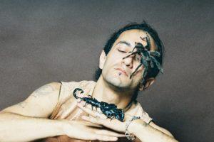 скорпион на съемку