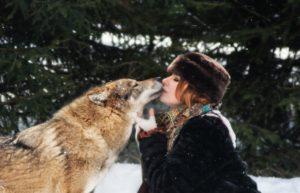 Волки и волкособы