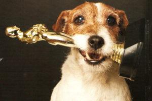 Животные получившие Оскар